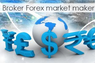Forex market maker brokers