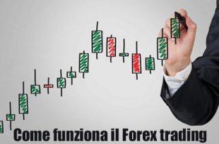 Forex trading per principianti la bibbia del forex